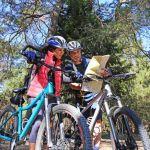 Location de vélo, balades : 3 activités à faire à Avignon