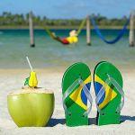 Préparez au mieux votre séjour au Brésil