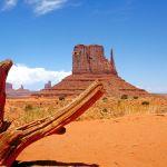 Voyage aux USA: Comment bien remplir sa fiche ESTA