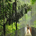 Partir à l'aventure au Costa Rica : que voir et que faire ?
