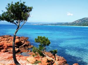 Une île splendide